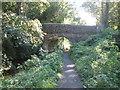 SK3353 : Crich Chase Bridge, Cromford Canal by John Slater
