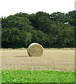 TG0935 : Two straw bales by the Belt by Evelyn Simak