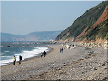 SY1988 : Branscombe Beach looking west by M Etherington
