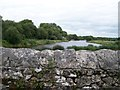 N0722 : The River Brosna south of Belmont by Eric Jones