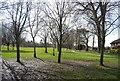 SU8750 : Manor Park by N Chadwick