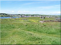 NX4736 : Isle of Whithorn by DAVE SANDS