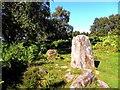SK2476 : Froggatt Edge Stone Circle by Brian Frost