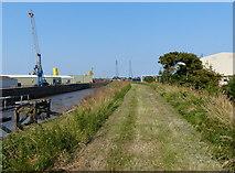 TF3242 : Macmillan Way along the River Witham by Mat Fascione