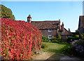 SU6776 : Cottage & Creeper by Des Blenkinsopp