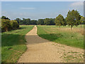 SU9574 : Cycle track, Windsor Great Park by Alan Hunt