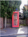 TG1617 : Felthorpe Telephone Box by Adrian Cable