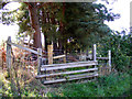 TG1620 : Footpath to Haveringland Road by Adrian Cable
