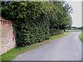TG1421 : Church Lane & Church Farm Victorian Postbox by Adrian Cable