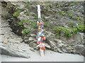 SW8836 : Totem pole on Porthbean Beach by Jeremy Bolwell
