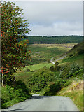 SN8056 : Mountain road in Cwm Tywi, Powys by Roger  Kidd