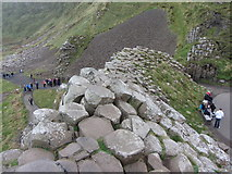 C9444 : Looking down from the Giant's Causeway by Gareth James