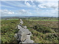 SW5037 : Drystone wall on Trink Hill by David Medcalf