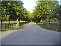 TQ1773 : The entrance to Ham House grounds by David Howard
