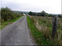 H1218 : Road at Lannanaria by Kenneth  Allen