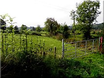 H1014 : Unshinagh Townland by Kenneth  Allen