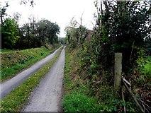 H1015 : Road at Kilnamaddyroe by Kenneth  Allen