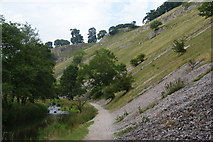 SK1357 : Scree on the side of Wolfscote Dale by Bill Boaden