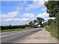TG2505 : B1332 Bungay Road, Bixley by Adrian Cable