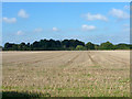 TG2531 : Field of stubble near Antingham by Robin Webster