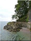 SX9265 : Halt Tide Rock, Babbacombe, Devon by Derek Voller