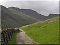 NY2706 : Track into Mickleden by Nigel Brown