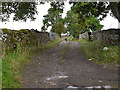 NY5416 : The start of Crag Lane by Nigel Brown
