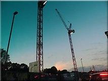 TQ2081 : Cranes on Victoria Road, Park Royal by David Howard