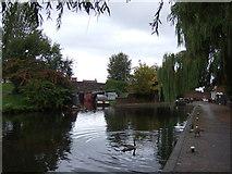 SO9199 : Birmingham Canal, Wolverhampton Level by JThomas