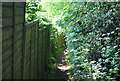TQ5541 : Tunbridge Wells Circular Walk / Wealdway by N Chadwick