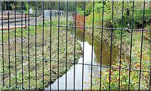 J3773 : Flood alleviation works, Orangefield Park, Belfast (7) by Albert Bridge