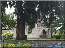 N9422 : Grounds of St. John's Church of Ireland, Kill by Darrin Antrobus