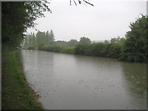 SP8828 : Grand Union Canal: Reach in Stoke Hammond by Nigel Cox