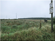 R1833 : Wind farm, moorland, forestry by Neville Goodman