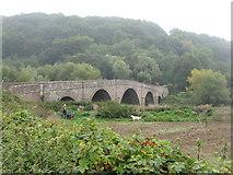 SO5819 : Kerne Bridge by M J Richardson