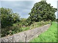 ST3898 : River Usk flood wall, alongside the Llanllowell road by Christine Johnstone