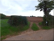 SY0280 : Two fields off Gore Lane by David Smith