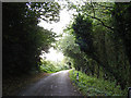 TM1142 : Pigeon's Lane, Washbrook by Adrian Cable