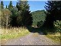 NM9739 : Forestry road near Barcaldine by Elliott Simpson