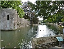 ST5545 : The Bishop's Palace moat, Wells by Derek Voller