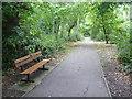 TQ3967 : Path in South Hill Wood by Marathon