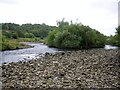 NZ0863 : Shingle islands on the River Tyne south of Ovingham by Andrew Curtis