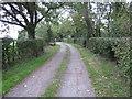 SJ4459 : Lane to Newbold by Jeff Buck