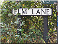 TM1141 : Elm Lane sign by Adrian Cable