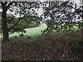 "SD7511 : House on ""The Hill"" by Philip Platt"