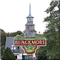 TL6001 : Blackmore Village Sign (Close Up) by Roger Jones