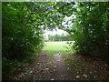 TQ3966 : The approach to Pickhurst Green by Marathon
