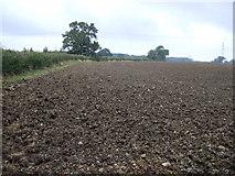 TF0323 : Farmland north of the A151 by JThomas