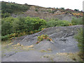 NZ9701 : Disused quarry and spoil heap by Pauline E