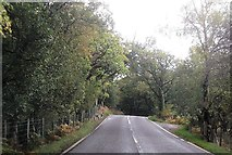 SH6044 : Small lay by on A4085 north of Pont Talyrni by John Firth